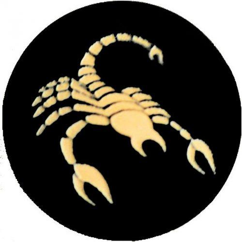 Signe scorpion