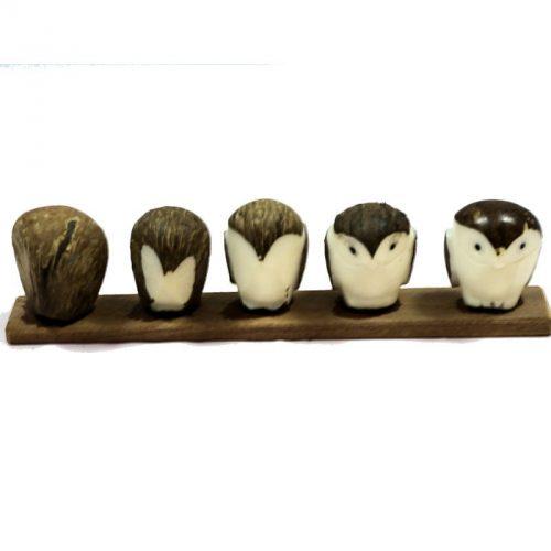 chouette taillée dans la graine de tagua