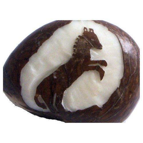 Graine de tagua gravure cheval