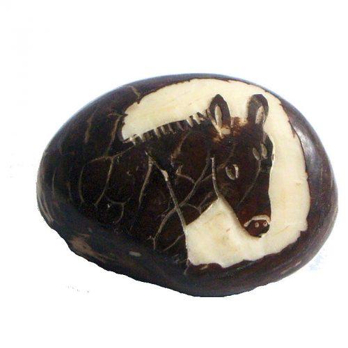 Tête de cheval tagua