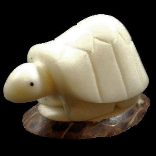 Tortue terrestre taillée dans la graine de tagua