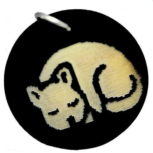 Médaillon pour chat