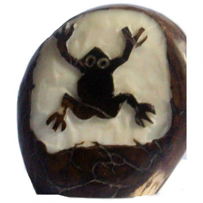 Graine de tagua gravure grenouille