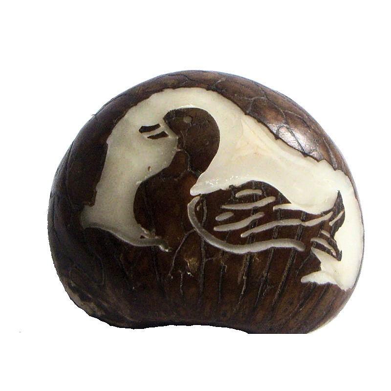 Graine de tagua gravure canard