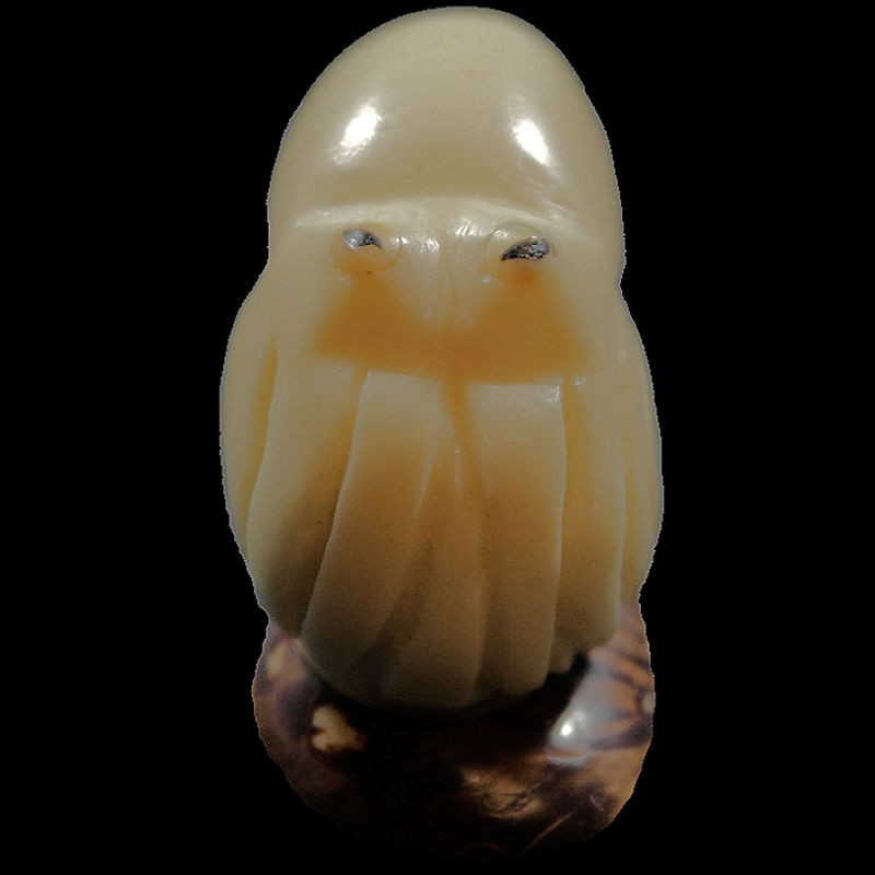 Calamar gravé dans la graine de tagua