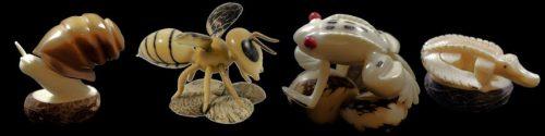 Insectes, reptiles, et autre