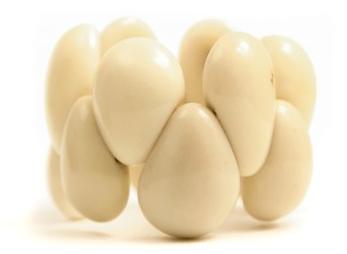Entretien-de-l-ivoire-vegetal